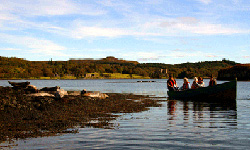 Dunvegan Seal Trips